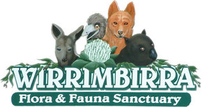 Wirrimbirra Sanctuary - Tourism Guide