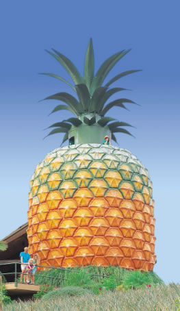 The Big Pineapple - Tourism Guide
