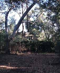 Ghost House Walk Trail Yanchep National Park - Tourism Guide
