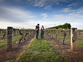 Coonawarra Wineries Walking Trail - Tourism Guide
