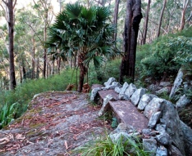 Wodi Wodi Walking Track - Tourism Guide