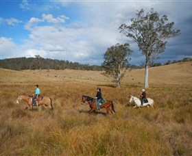 Chapman Valley Horse Riding - Tourism Guide