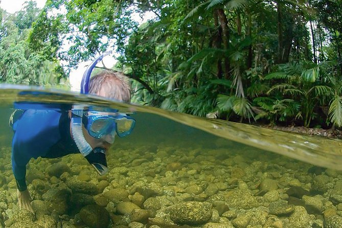 Mossman River Drift Snorkelling From Port Douglas Or Mossman - Tourism Guide