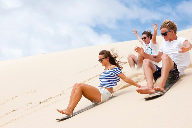 Port Stephens Day Tour with Dolphin Watching Sandboarding  Australian Wildlife - Tourism Guide